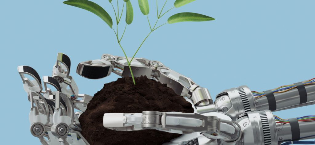 Nayeen.info-Artificial-Intelligence-agri