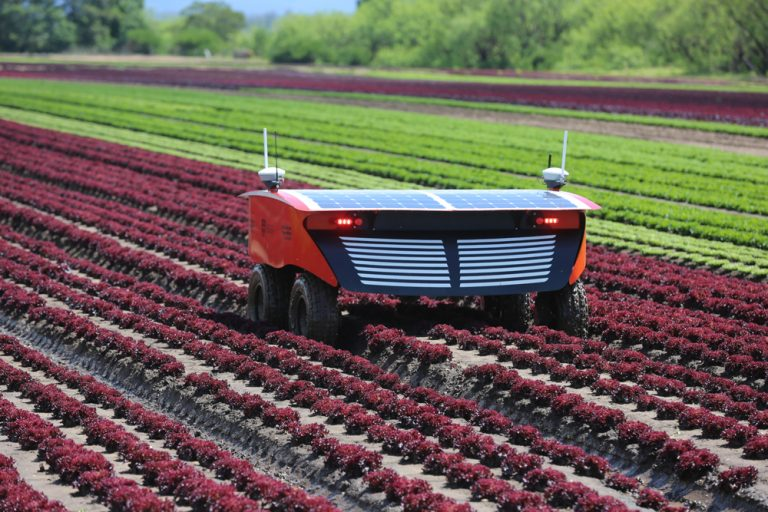 Robot looking for weeds smart farming nayeen.info 1
